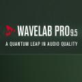 Wavelab 9.5 Text